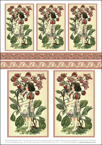 Download - Motifs - Hawthorn