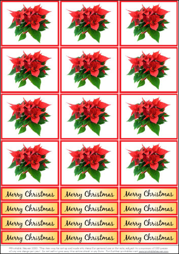 Download - Poinsettia Photo Motifs