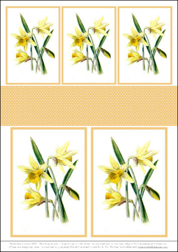 Download - Motifs - Traditional Daffodils