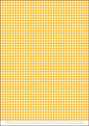 Download - Shirt Background - Gingham Orange
