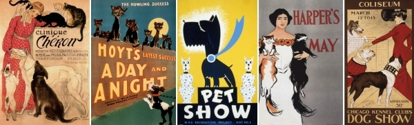 Cat and dog posters