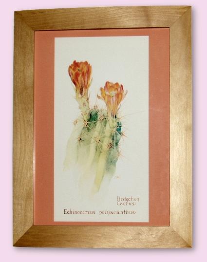 Project - Hedgehog Cactus - A4 Print