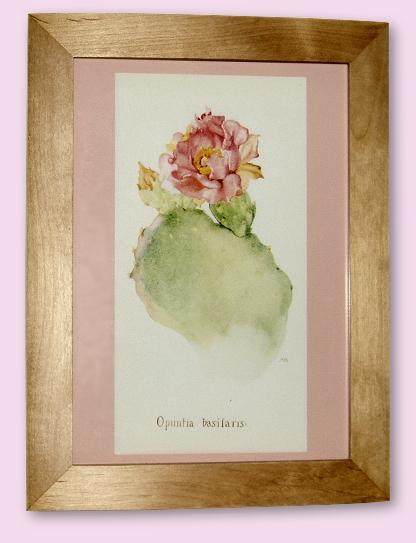 Project - Opuntia Basilaris - A4 Print