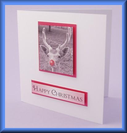 Project - Reindeer photo motif card