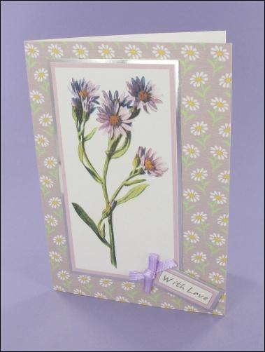 Project - Lilac Michaelmas Daisy card