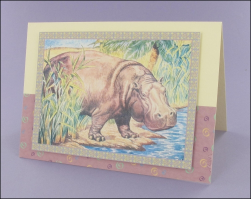 Project - Hippo card