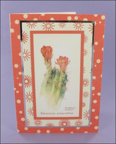 Project - Hedgehog Cactus card