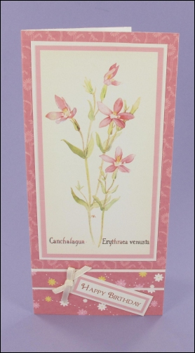 Project - Canchalagua Birthday card