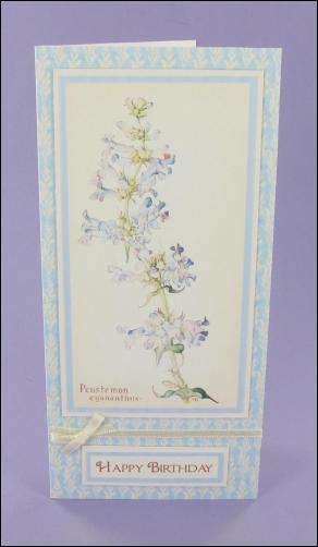 Project - Penstemon Blue Birthday card