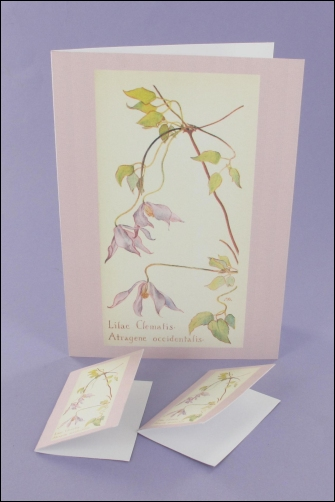 Project - Lilac Clematis Notecard & Tags