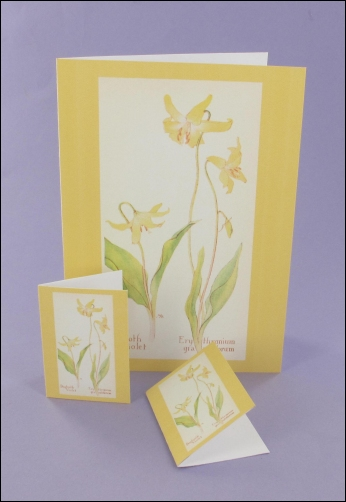 Project - Dogtooth Violet Notecard & Tags