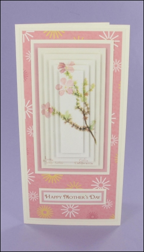 Project - Large Prickly Mother's Day Pyramage Card