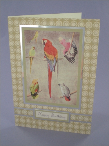 Project - Lovely Parrots card
