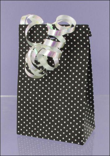 Project - Polka Dot Mono Gift bag
