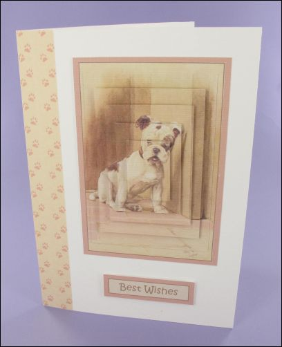 Project - Our Friend the Dog large pyramage card